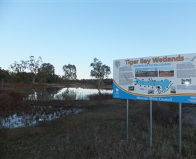 Tiger Bay Wetlands - Tourism TAS