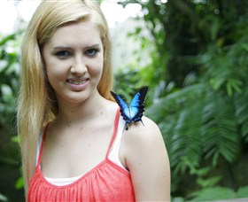 Australian Butterfly Sanctuary - Tourism TAS