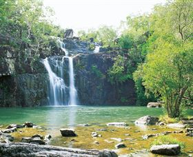 Cedar Creek Falls - Tourism TAS