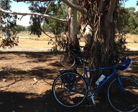 Murchison Rail Trail - Tourism TAS