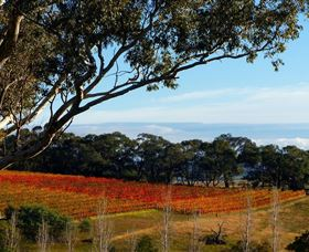 Bloodwood Estate - Tourism TAS