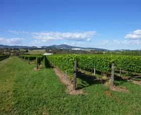 Hedberg Hill Wines - Tourism TAS
