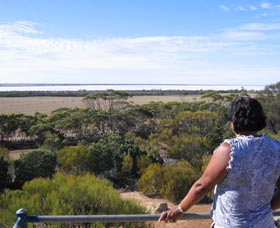 Lake Grace Lookout - Tourism TAS