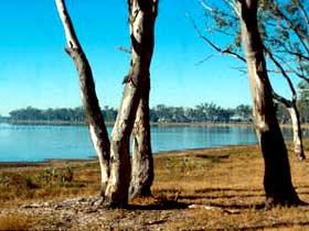 Lake Broadwater Conservation Park - Tourism TAS
