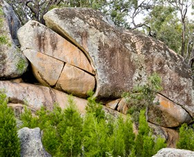 Frog Rock - Tourism TAS