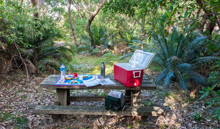 Little Llangothlin picnic area - Tourism TAS