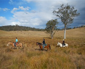 Chapman Valley Horse Riding - Tourism TAS