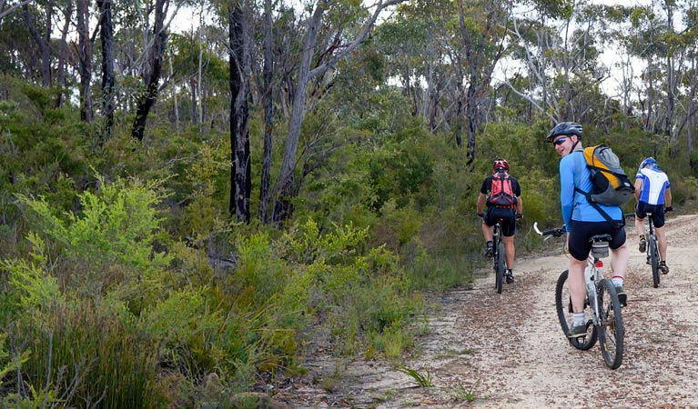 McMahon's Point ride - Wentworth Falls - Tourism TAS