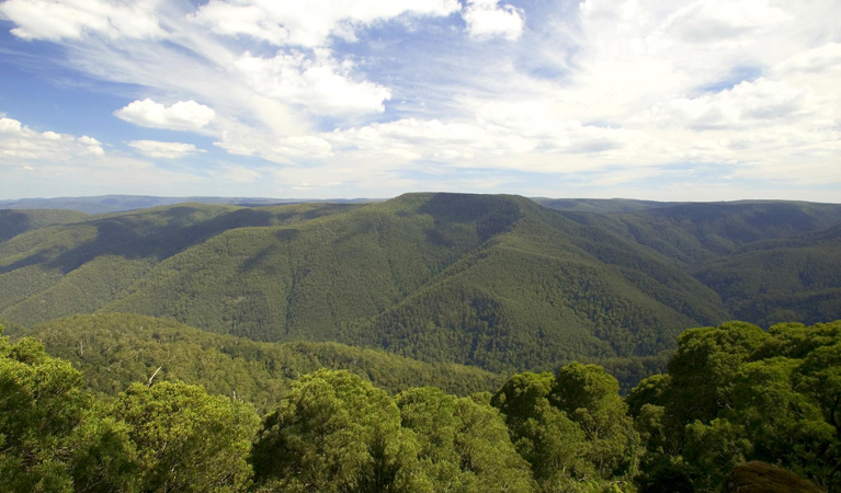 Barrington Tops National Park - Tourism TAS