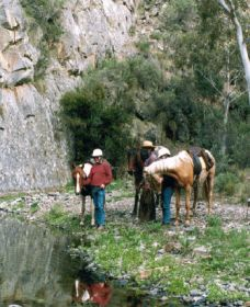 Yarramba Horse Riding - Tourism TAS
