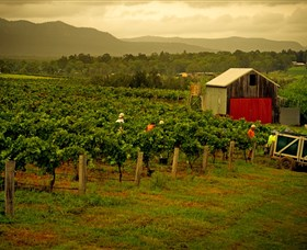 Around Hermitage Wine and Food Trail Hunter Valley - Tourism TAS