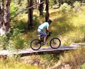 The Steps Mountain Bike Park - Tourism TAS