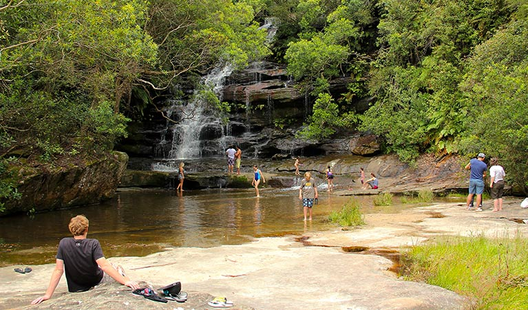 Somersby Falls picnic area - Tourism TAS