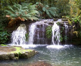 Barrington Tops National Park Walks - Tourism TAS