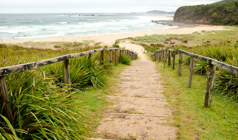 Pretty Beach to Durras Mountain walking track - Tourism TAS