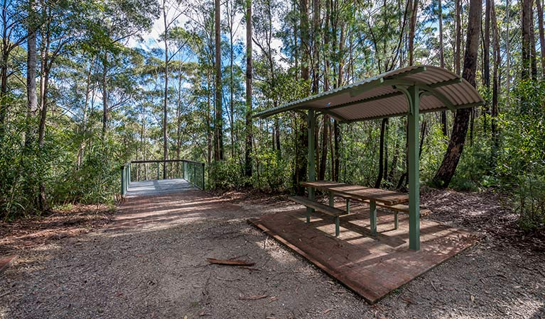 Big Nellie lookout and picnic area - Tourism TAS
