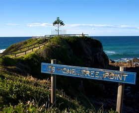 One Tree Point Lookout and Picnic Area