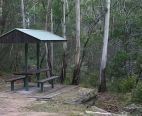 White Rock River picnic area - Tourism TAS