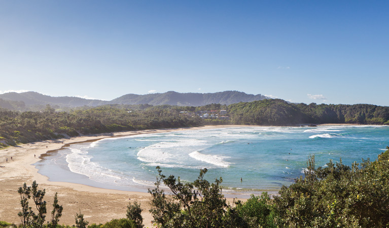 Coffs Coast Regional Park
