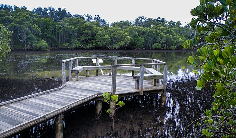 Walk on Water walking track - Tourism TAS