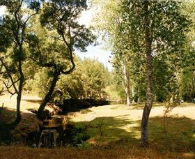 Oldina Picnic Area - Tourism TAS