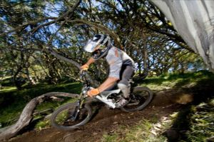 All Terrain Cycles - Tourism TAS