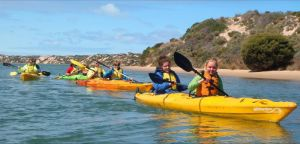 Canoe the Coorong - Tourism TAS