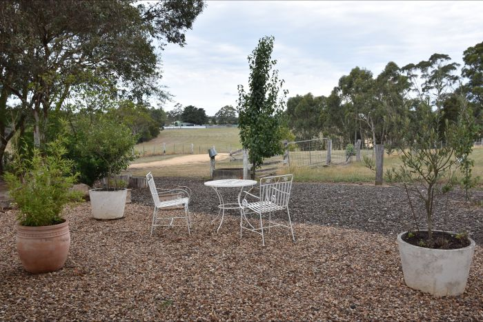 Cygnet Park Country Retreat - Tourism TAS