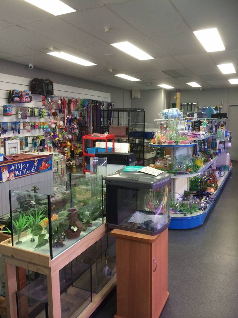 Nambour Pet Shop - Tourism TAS