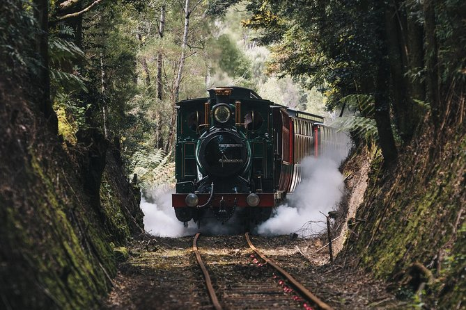 West Coast Wilderness Railway River and Rainforest from Strahan