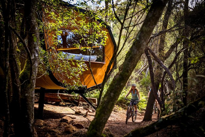 Blue Derby Pods Ride Experience 3-Day Mountain Bike Adventure in Exclusive Pods