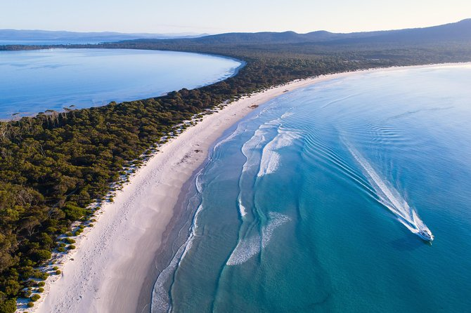 Full-Day Maria Island Scenic Cruise Including Buffet Lunch and Guided Walk