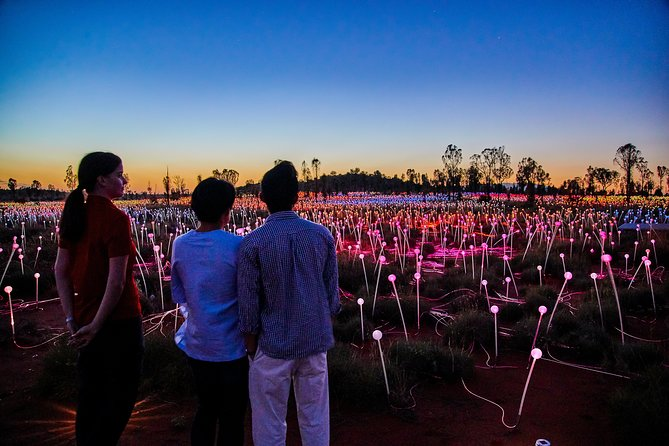 Uluru Field of Light Sunrise Tour - Tourism TAS