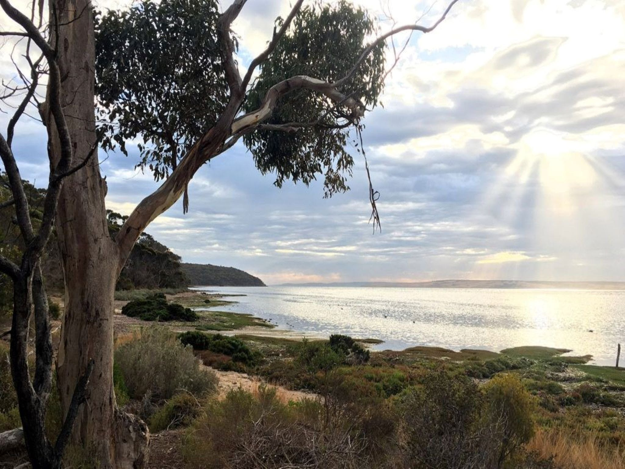 Fish Cannery Walking Trail - Tourism TAS