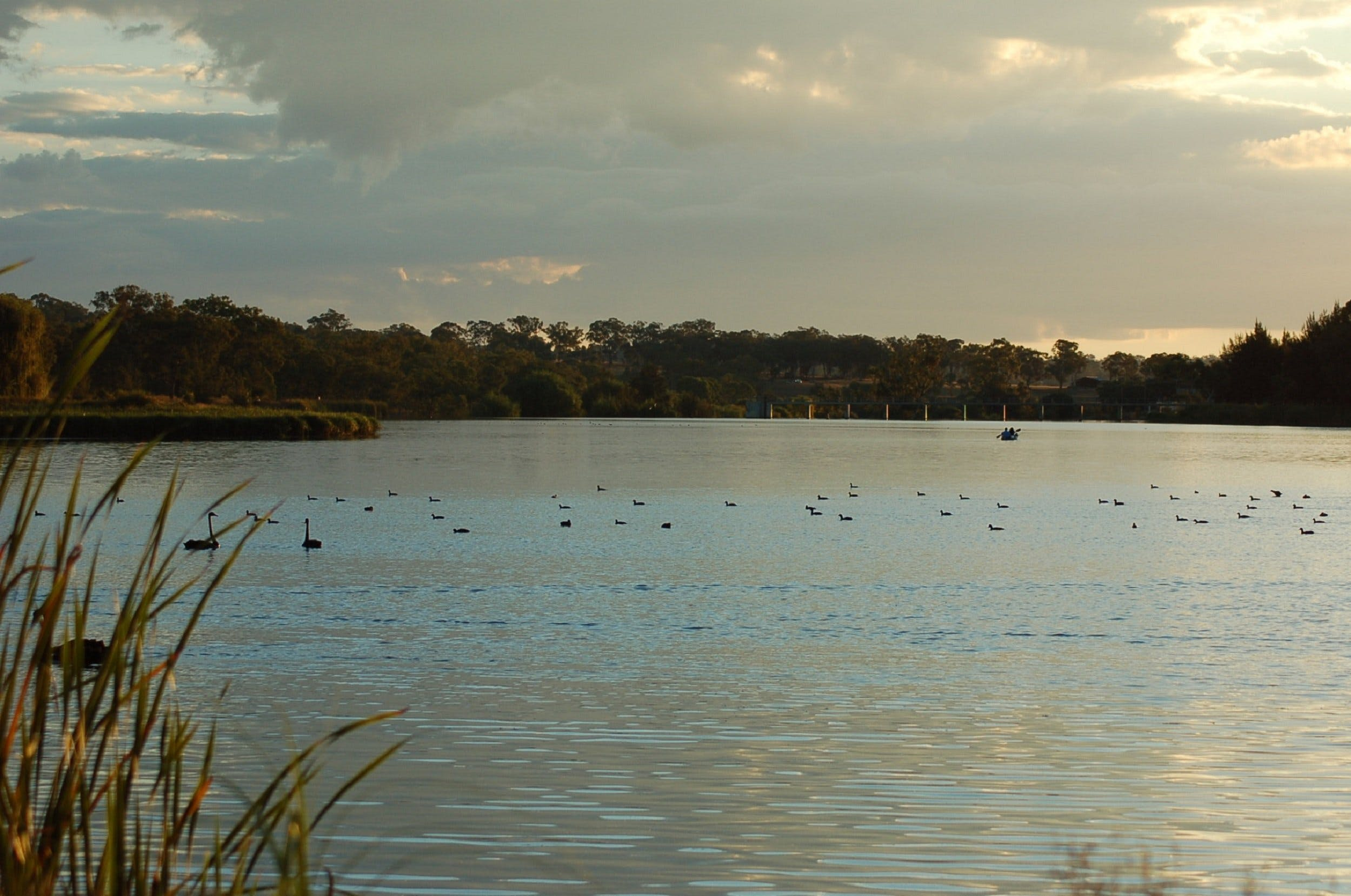 Lake Inverell Reserve - Tourism TAS