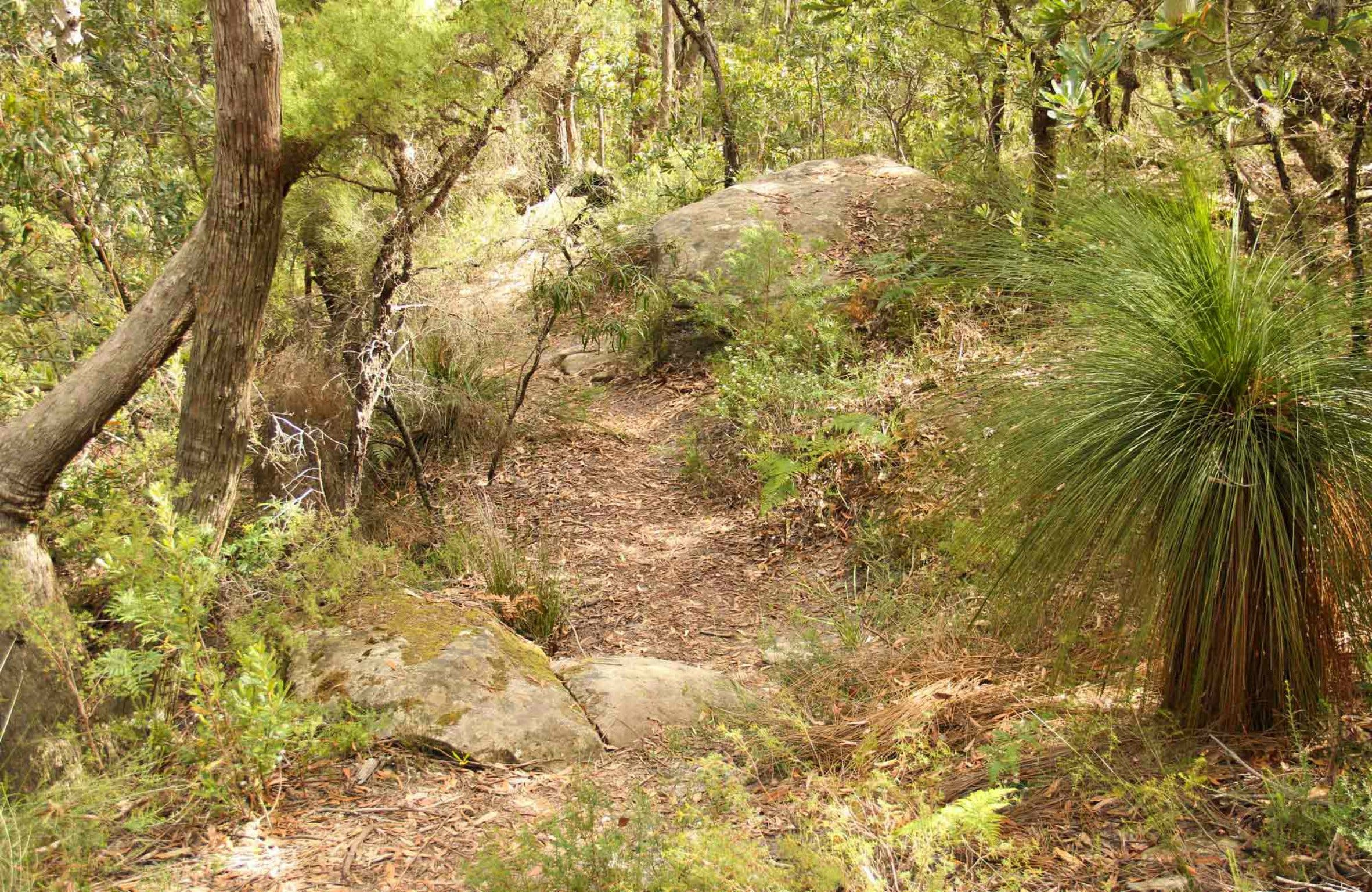 Mount Carnarvon Walking Track - Tourism TAS
