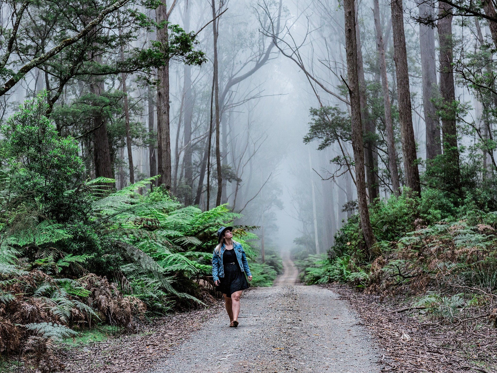 The Corn Trail Walking Track - Tourism TAS