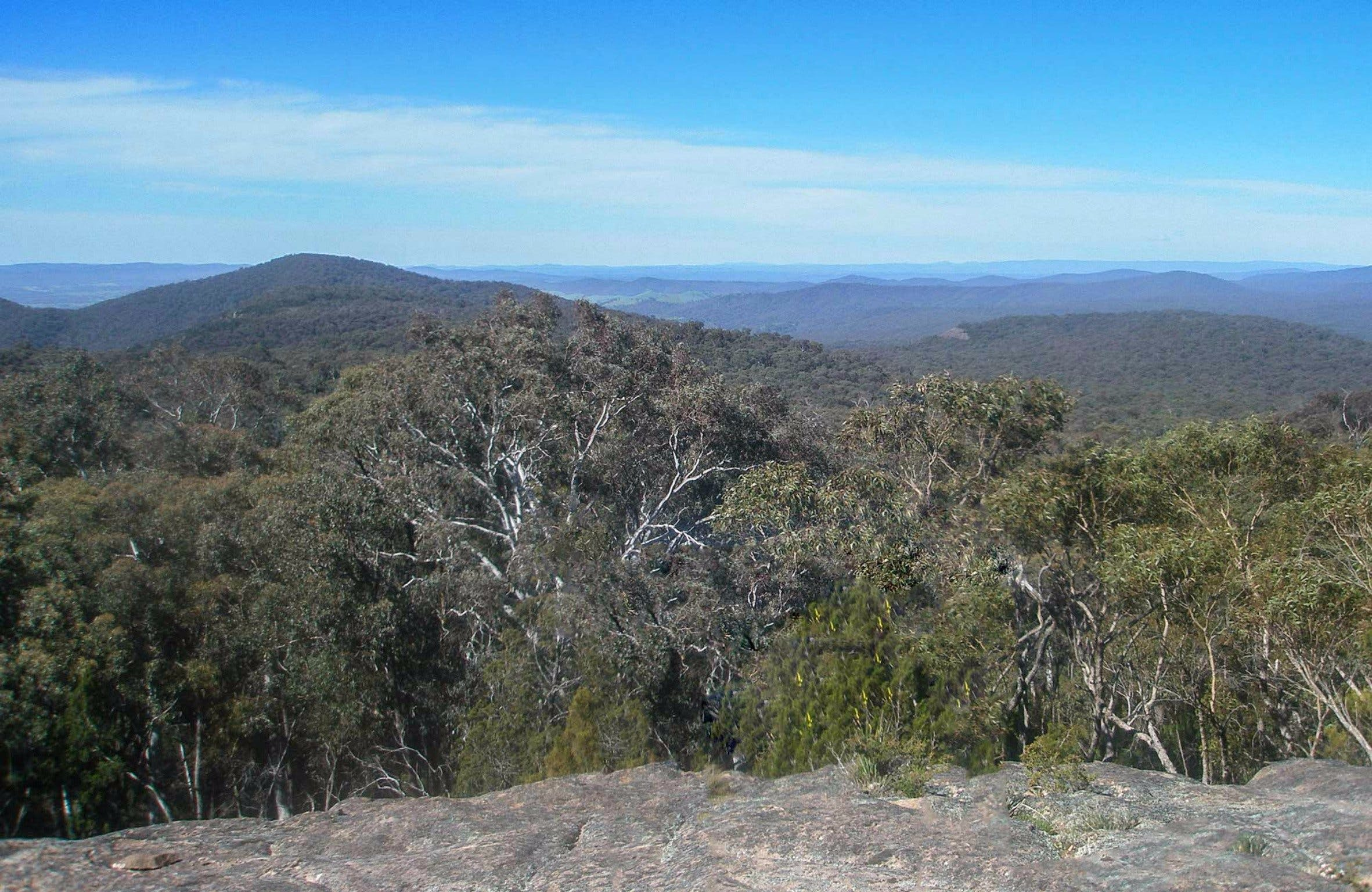 Woomargama National Park - Tourism TAS