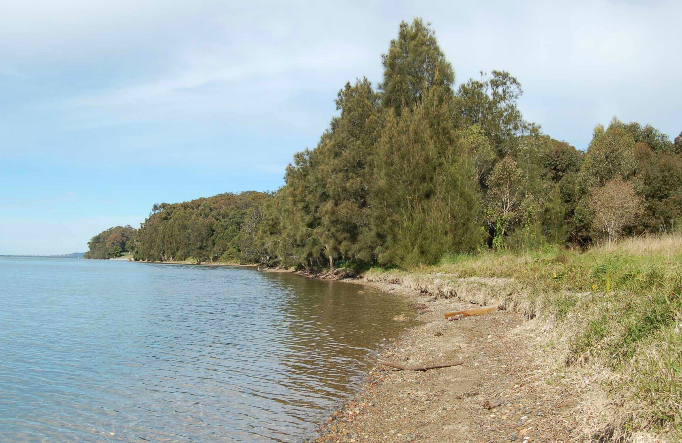 Lake Macquarie State Conservation Area - Tourism TAS