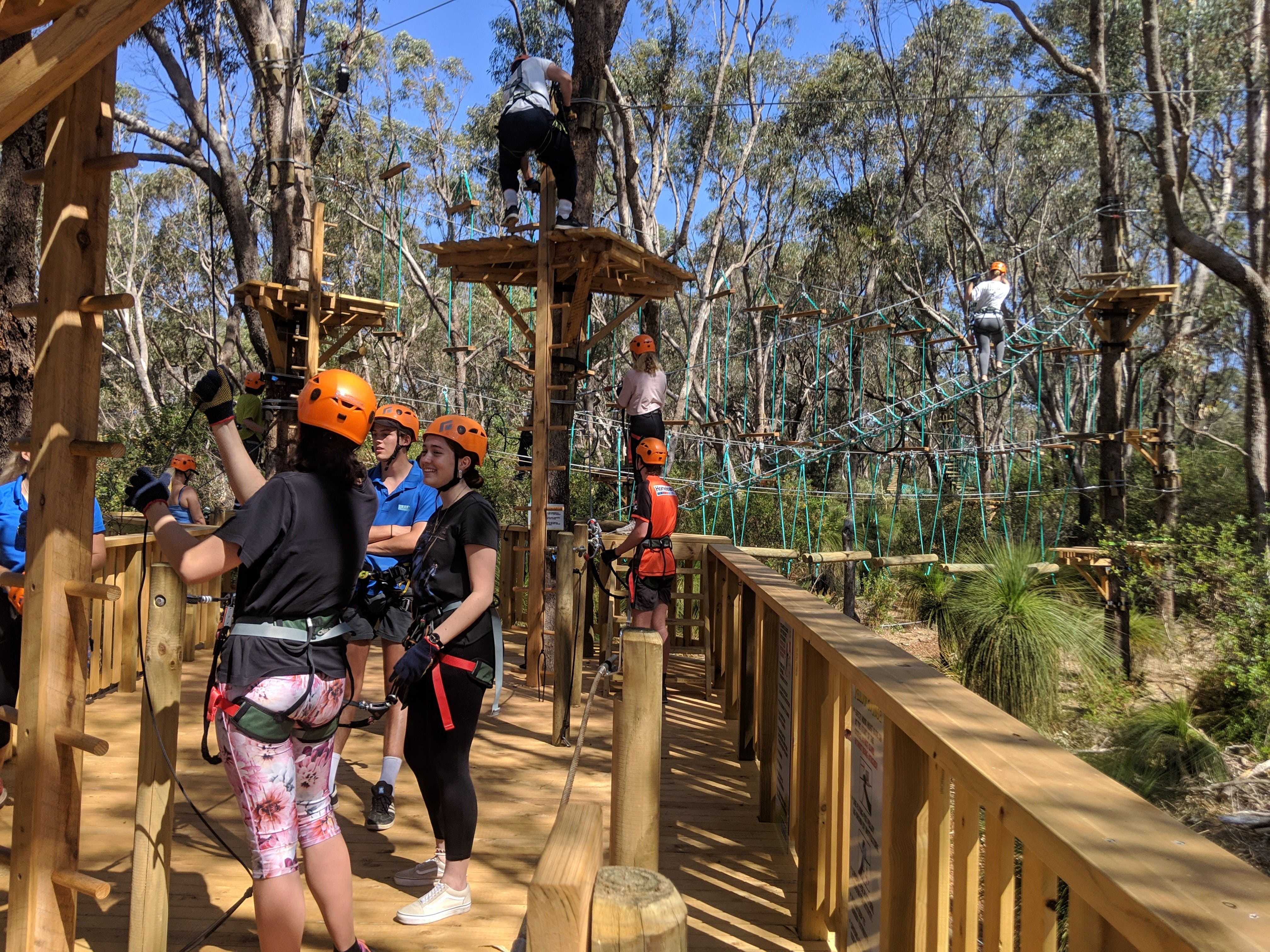 Trees Adventure - Yanchep Park - Tourism TAS