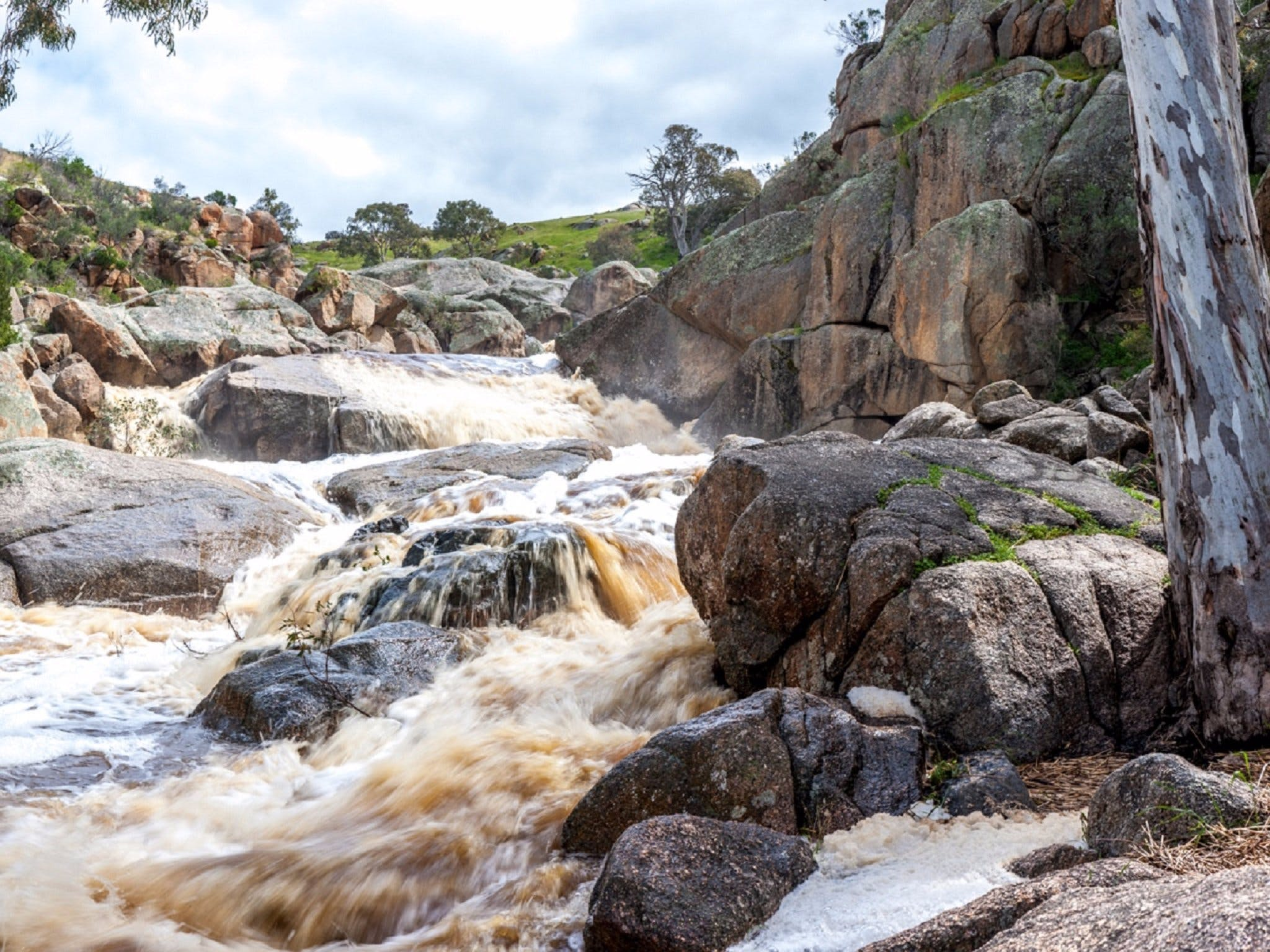 Mannum Waterfalls - Tourism TAS