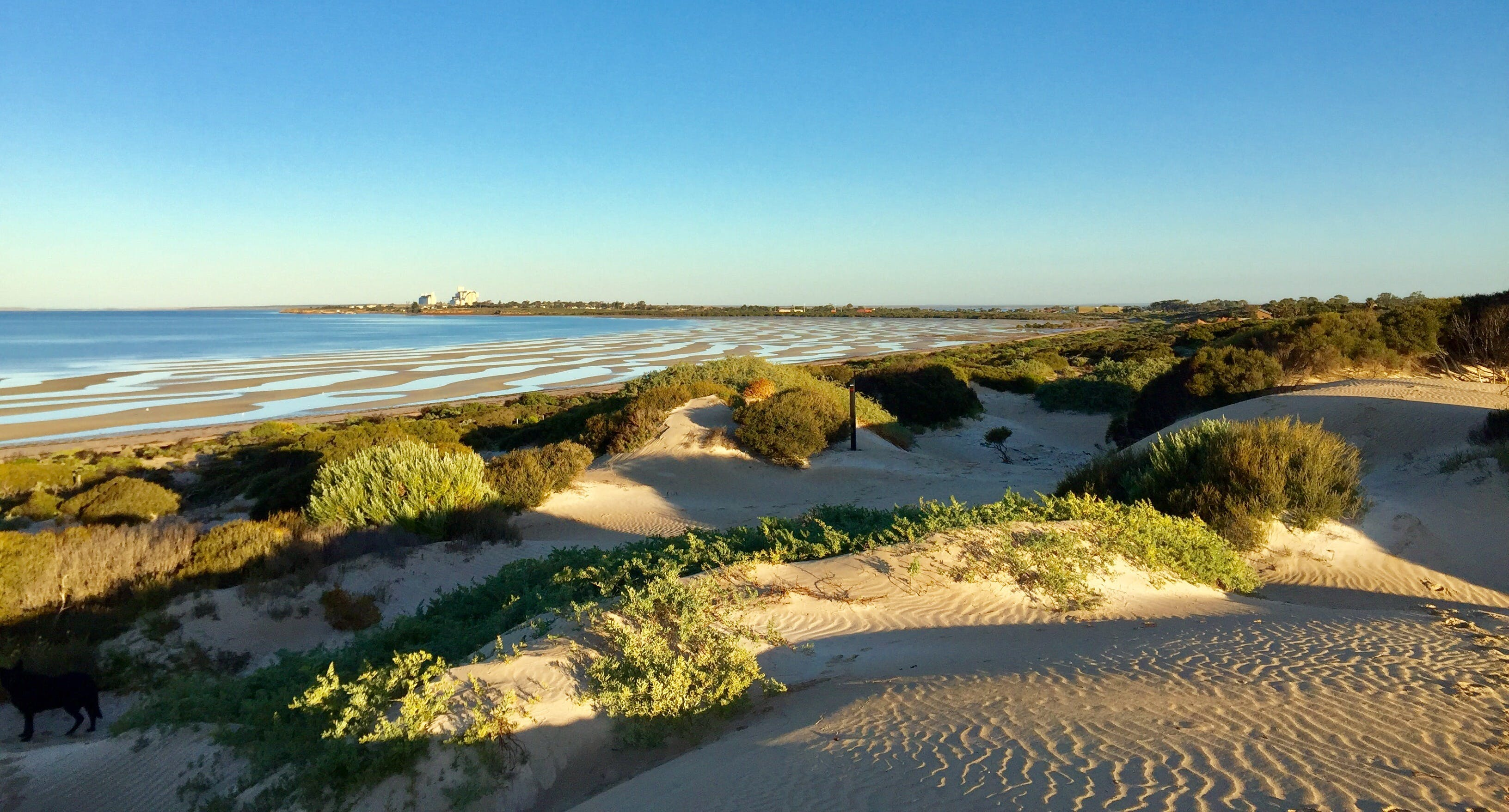 Shelly Beach Dune Walk Trail - Tourism TAS