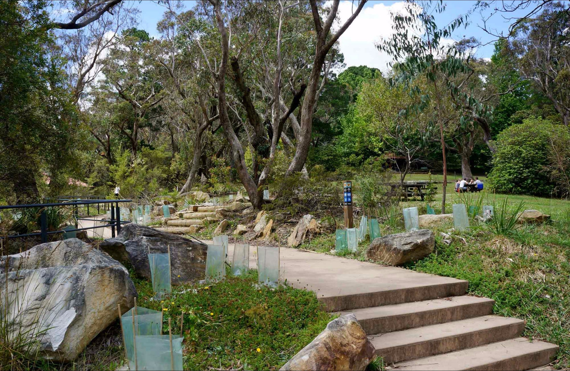 Wentworth Falls picnic area - Tourism TAS