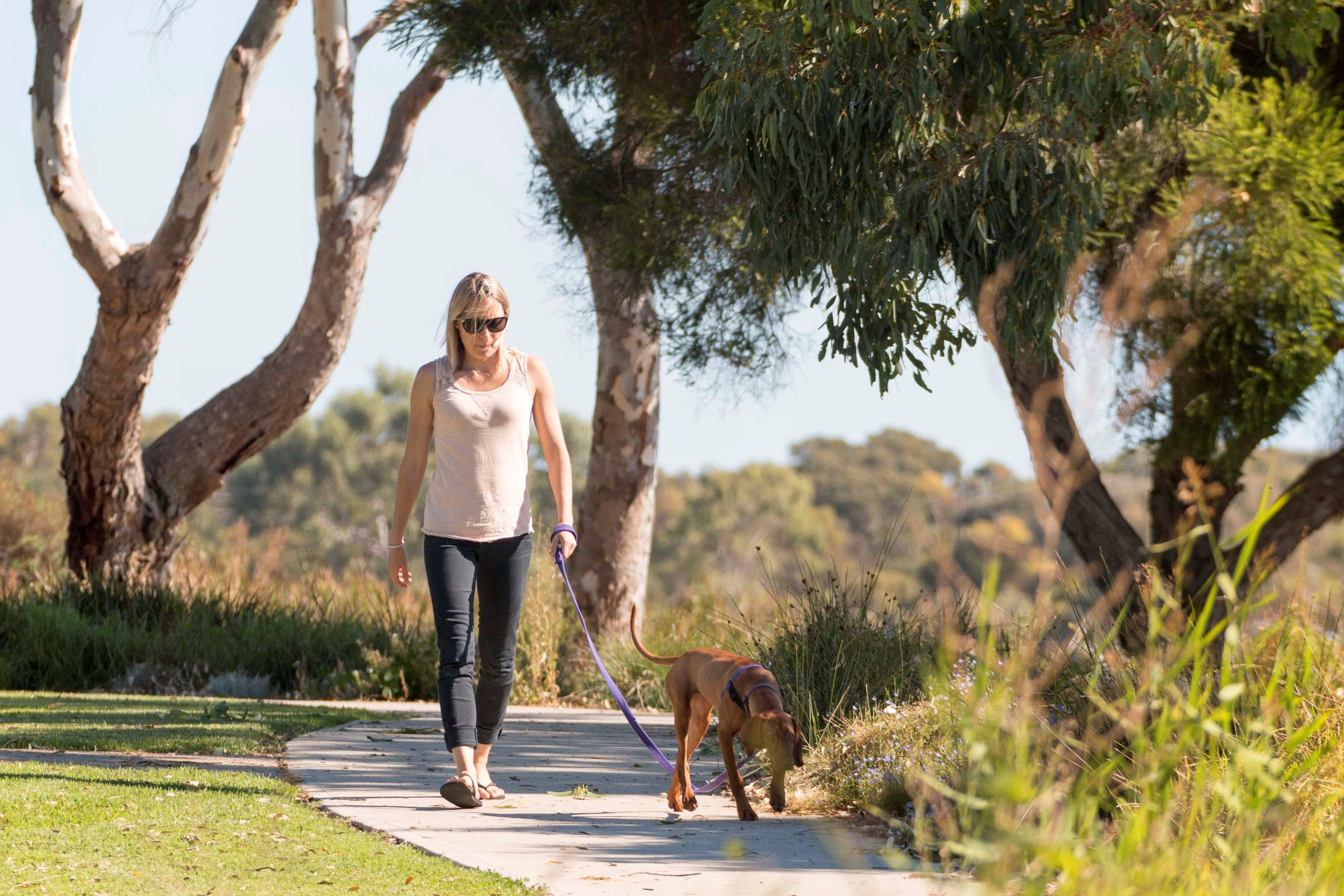 Meningie Walking and Cycling Trails - Tourism TAS
