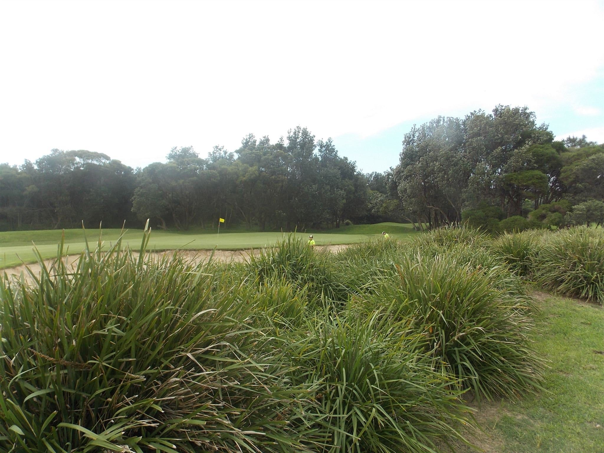 Shoalhaven Heads Golf Club - Tourism TAS
