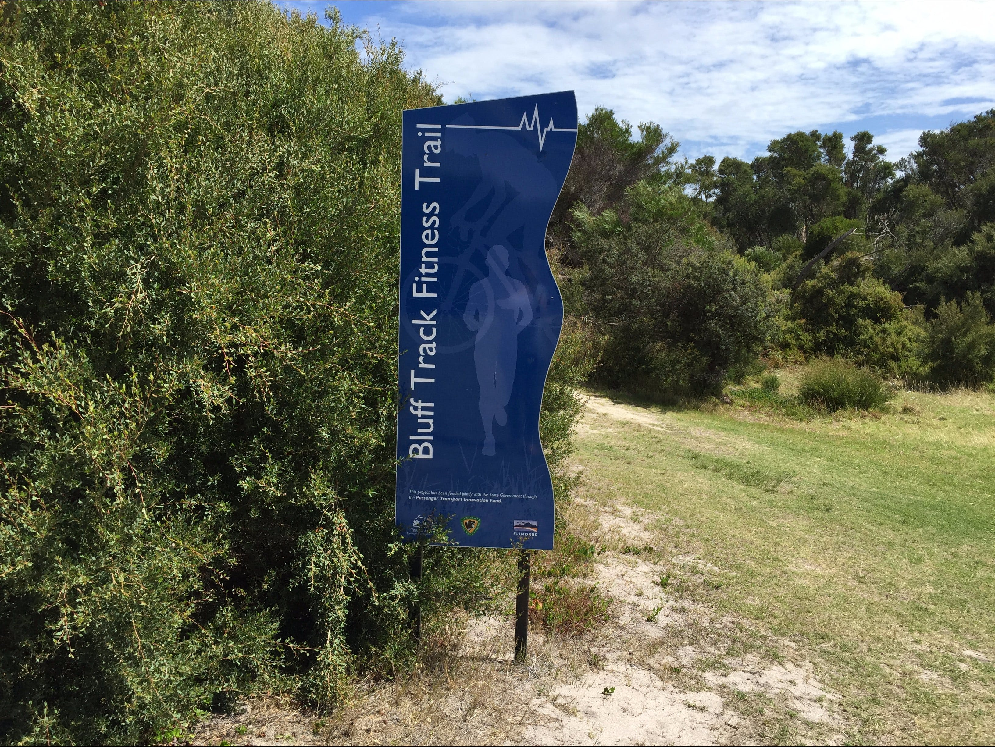 Bluff Track Fitness Trail - Tourism TAS