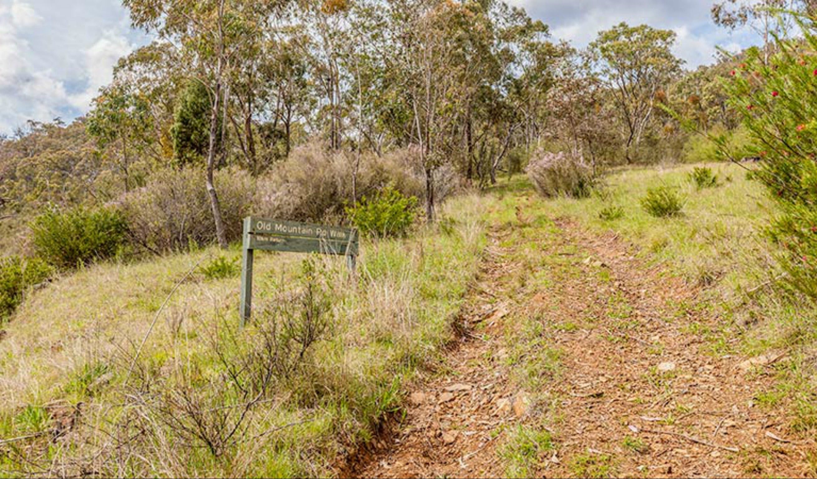 Old Mountain Road Walking Track - Tourism TAS