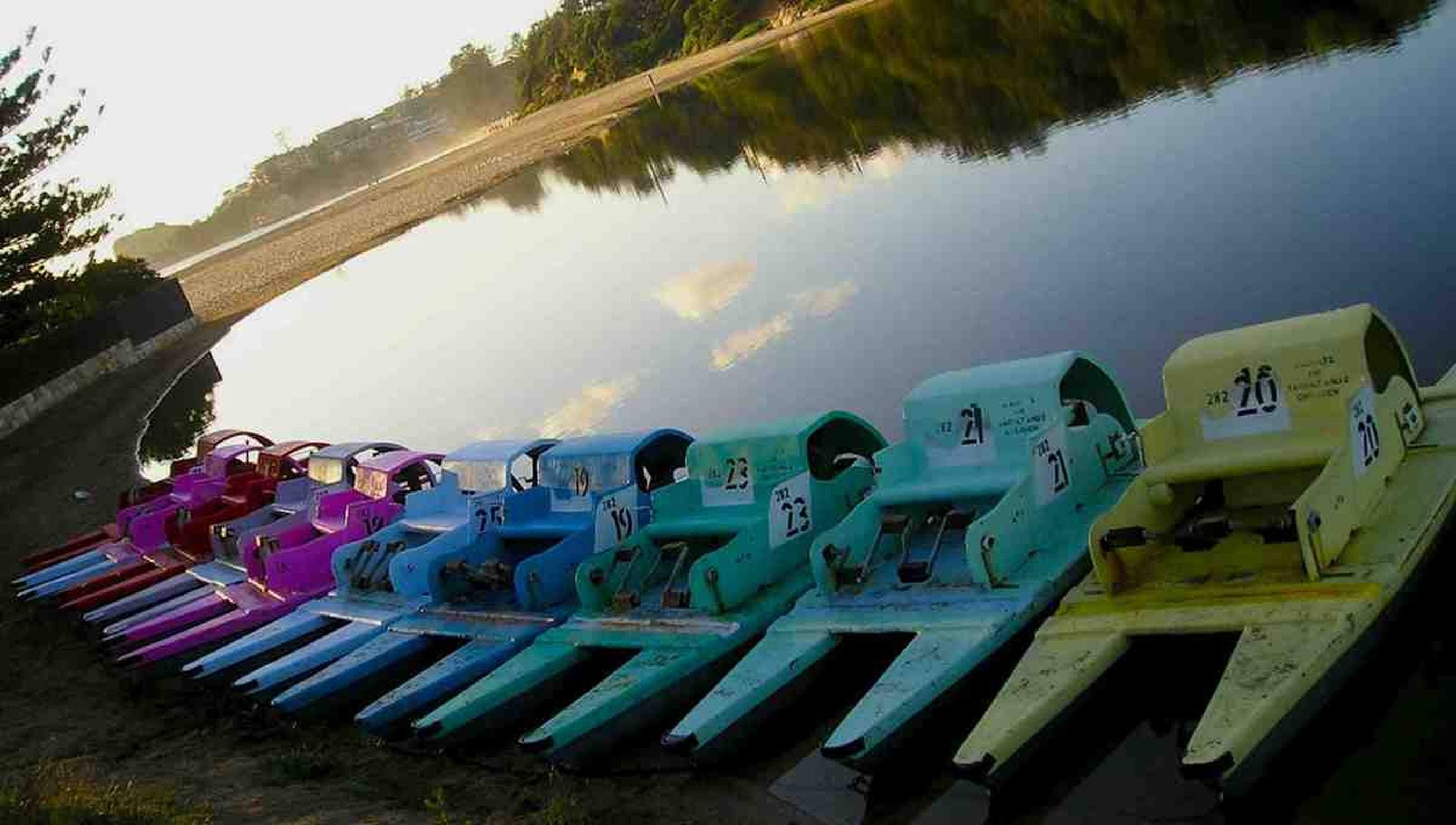 Terrigal Paddle Boats and Stand Up Paddle Boards - Tourism TAS
