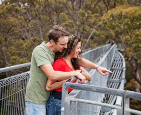 Valley of the Giants Tree Top Walk - Tourism TAS