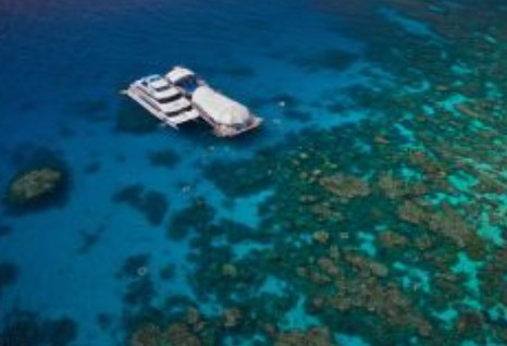 Great Adventures Reef and Green Island Cruises - Tourism TAS